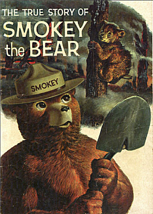 Smokey the Bear             image link